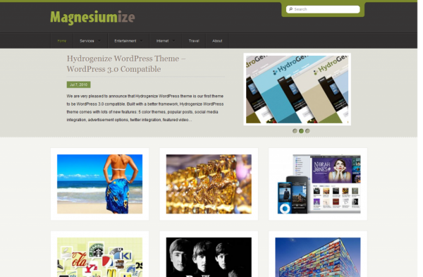 wordpress theme design portfolio